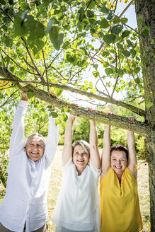 Happy elderly friends holding branch at tree - RKNF000206