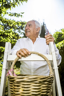 Senior man with basket and ladder in garden - RKNF000278