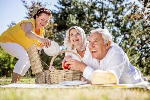 Happy elderly friends having a picnic on a meadow - RKNF000321