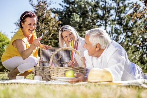 Happy elderly friends having a picnic on a meadow - RKNF000323
