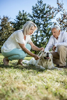 Elderly couple with dog on a meadow - RKNF000367