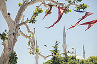 Turkey, Istanbul, view to the minarets of Blue Mosque with Turkish flags hanging at tree in the foreground - BZF000235