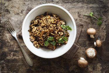 Barley risotto with champignon and coriander - EVGF002176