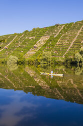 Germany, Stuttgart, woman kayaking on Neckar in front of vineyards - WDF003250
