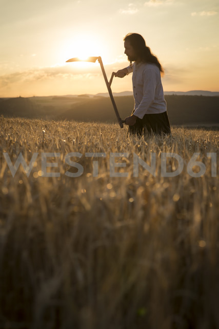 Organic farmer with scythe in barley field at sunrise - MIDF000602