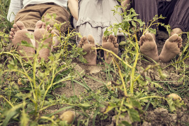 Three people with dirty feet sitting on potato field - MIDF000630