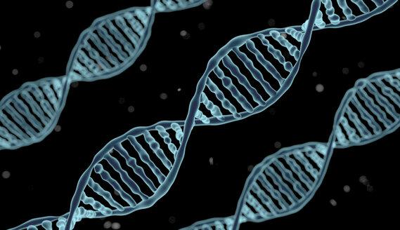 DNA-molecule - HWIF000004