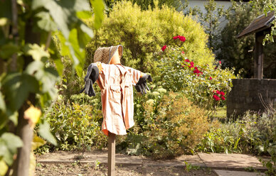Garden with scarecrow - MFRF000429