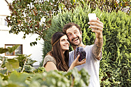 Couple taking a selfie in the garden with red cabbage - MFRF000445