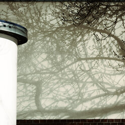Shadows of a tree on facade and advertising column in the foreground - TLF000746