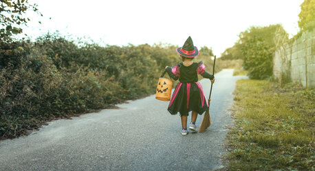 Back view of little girl masquerade as a witch with halloween lantern and broom - MGOF000678