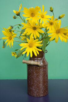 Enamel can with blossoms of sunchoke in front of green background - GISF000164