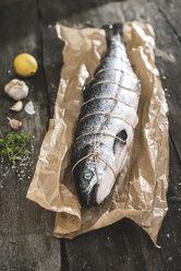 Raw salmon bound with string - DEGF000539