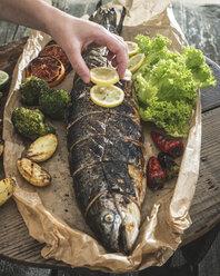 Roasted salmon - DEGF000541