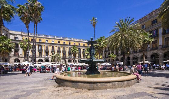 Spain, Barcelona, Barri Gotic, Placa Reial - AMF004240