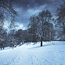 Winter landscape in the afternoon - DWIF000605