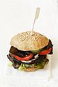 Homemade veggie burger, mushroom lentil fritter - EVGF002387