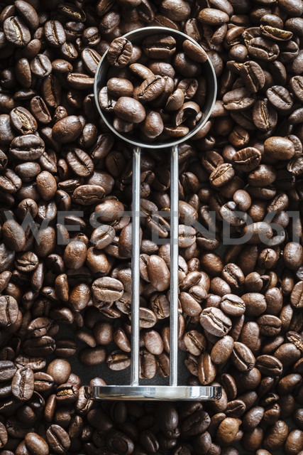 Coffee beans and a coffee spoon - EVGF002259