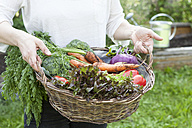Man holding basket with mixed vegetables - RBF003136