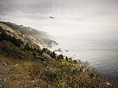 USA, California, Pacific Coast, National Scenic Byway, Big Sur, ragged coastline - SBDF002250