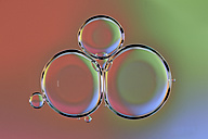 Water bubbles on oil - MJOF001100