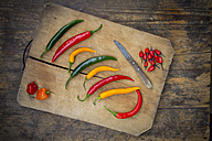 Different chili peppers on wood - LVF003888