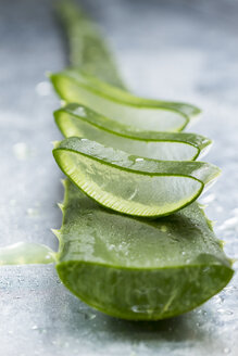 Sliced stem of Aloe Vera - JUNF000438