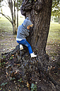 Little boy climbing on a tree trunk - MGOF000780