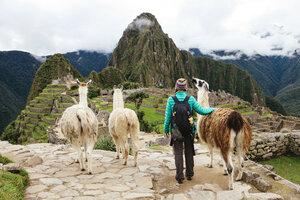 Peru, Machu Picchu region, Female traveler looking at Machu Picchu citadel and Huayna mountain with three llamas - GEMF000413