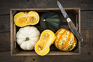 Wooden box of different sorts of mini squashes on wood - LVF003922
