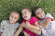 Portrait of three laughing children lying side by side on a meadow - ERLF000050