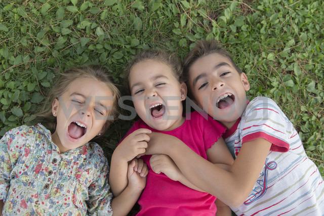 Portrait of three screaming children lying side by side on a meadow - ERLF000053