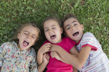 Portrait of three screaming children lying side by side on a meadow - ERLF000053