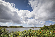 Ireland, County Galway, Bertaghboy Bay near Cashel - ELF001614