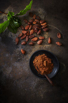 Cocoa beans and bowl of cocoa on rusty ground - KSWF001634