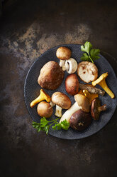 Plate of different mushrooms on rusty ground - KSWF001637