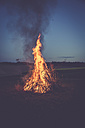 Camp fire on a meadow in the evening - SARF002197