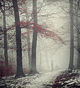 Man on forest path in winter - DWI000623