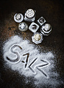 Different salt shakers and the word 'Salz' written in salt - KSWF001647