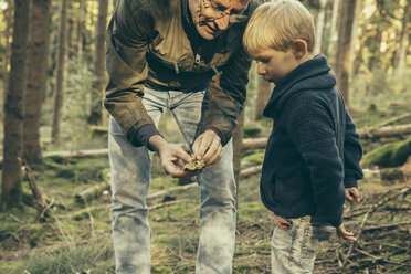 Mature man collecting bay bolete mushrooms with little boy - MFF002420