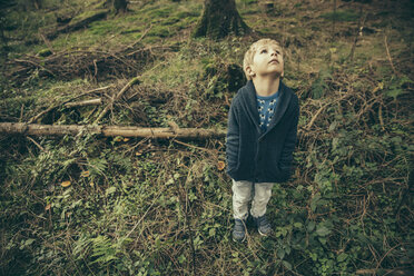 Little boy standing in forest looking up in wonder - MFF002429