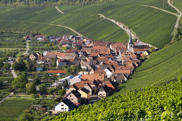Germany, Lower Franconia, Escherndorf surrounded by vinyards - SIEF006814