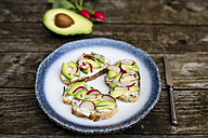 Avocado radish bread on plate - SARF002243