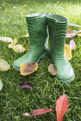 Autumn leaves and rubber boots - DEGF000557