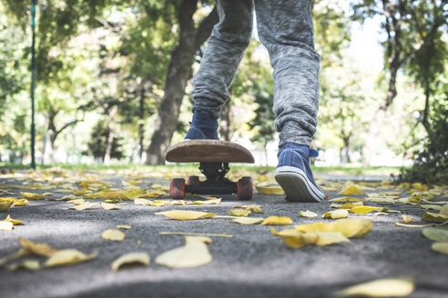 Boy with skateboard in park in autumn - DEGF000560