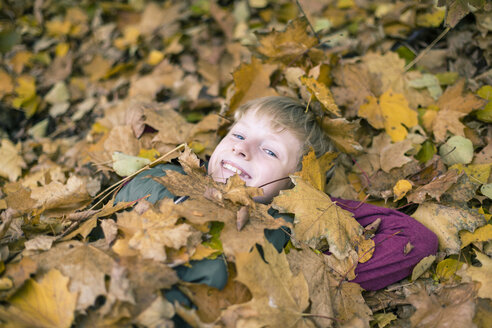 Portrait of smiling boy lying on the ground covered with autumn leaves - SARF002261