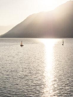 Switzerland, Ticino, Lago Maggiore - LAF001526