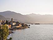 Switzerland, Ticino, Lago Maggiore, Brissago - LAF001532