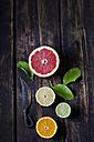 Halves of different citrus fruits on dark wood - CSF026674