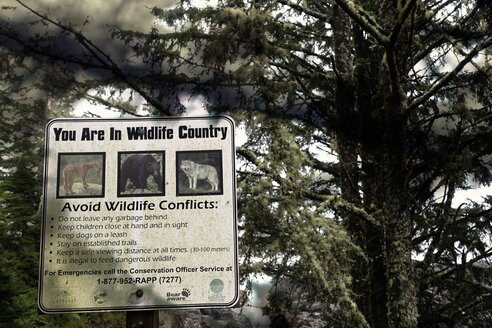 Canada, Vancouver Island, Warning sign for wild animals in rain forest - TM000044